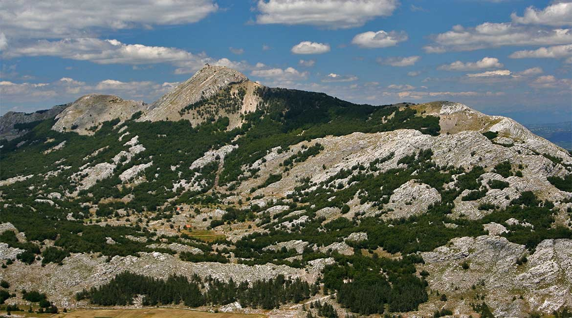 The Lovcen mountain range.