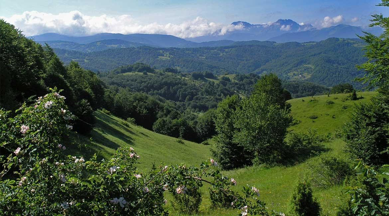 The Bjelasica mountain range.