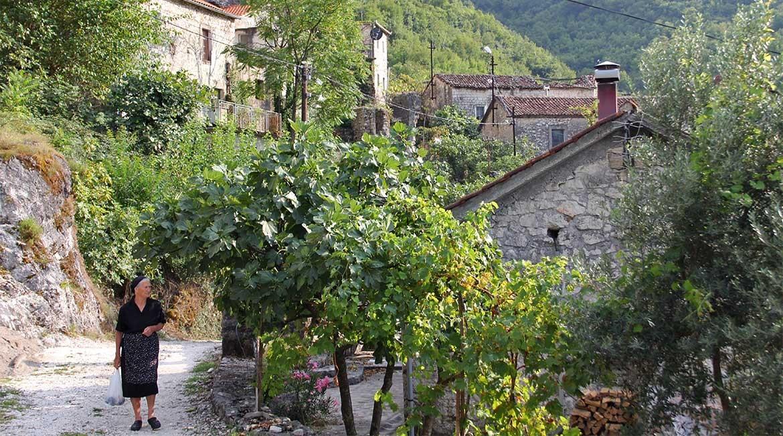 The village of Godinje.