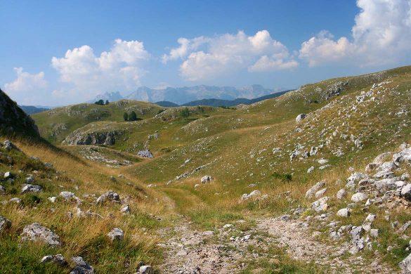The sinjajevina mountain range.