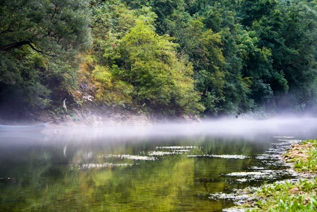 rijeka-crnojevica-fog