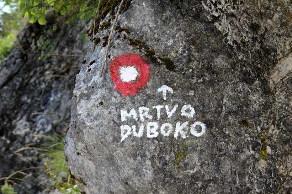 mrtvica ravijn/rivier