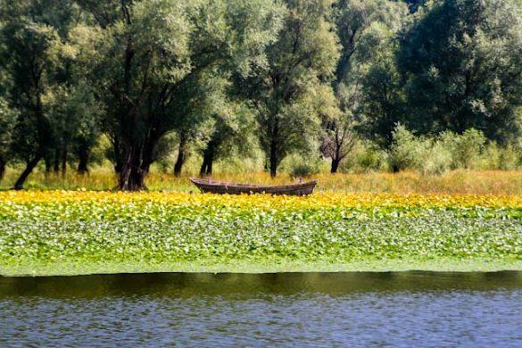 rijeka crnojevica rivier